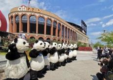 人偶大熊猫亮相纽约花旗球场