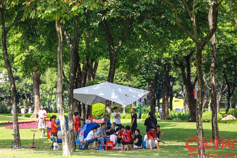 2019年10月4日,不少廣州市民拖家帶口在二沙島綠地享受國慶假期,歡聲笑語在草地間此起彼伏。 金羊網記者 宋金峪 攝