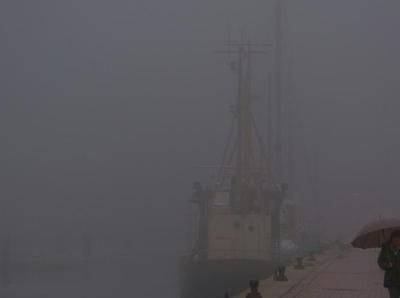 德國北部迎來大霧天氣 居民霧中出行