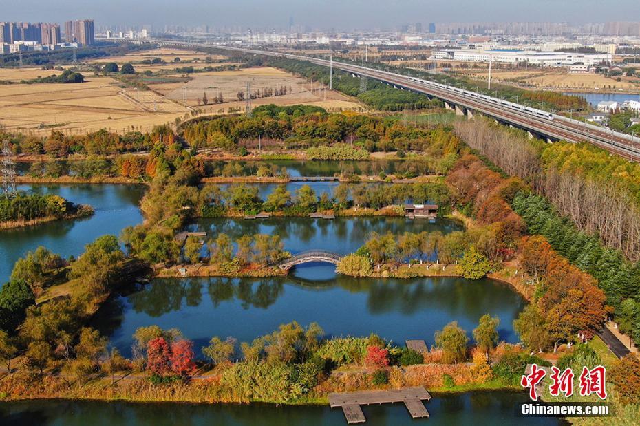 航拍苏州花桥天福国家湿地公园冬日画卷
