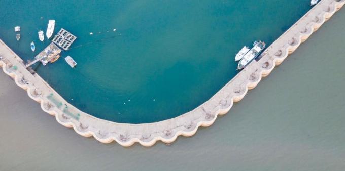 山东青岛渔港现两种颜色 绿色灰色泾渭分明