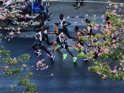 一路风光明媚 广州马拉松跑手经过猎德大桥
