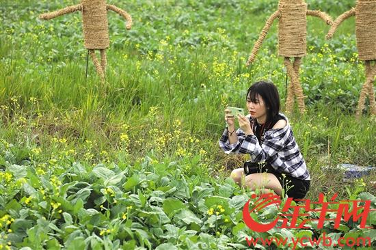 珠海每年或投入亿元支持乡村产业发展