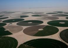 航拍沙特东北部沙漠 绿洲点缀荒漠如同撒落的光碟