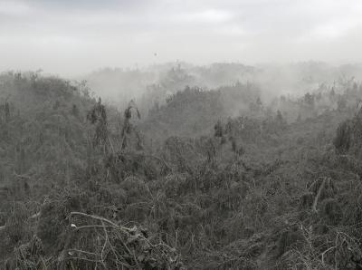 航拍火山灰覆盖的菲律宾街区 空无一人如末日城镇