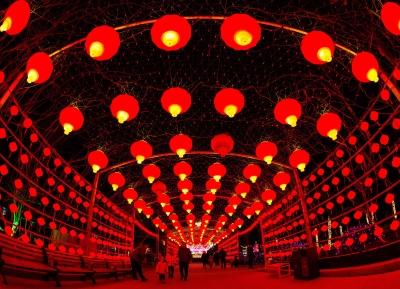 彩燈璀璨迎新春