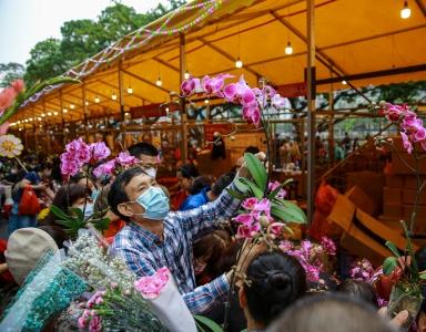 广州传统花市提前休市