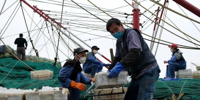 浙江舟山:渔港复工忙