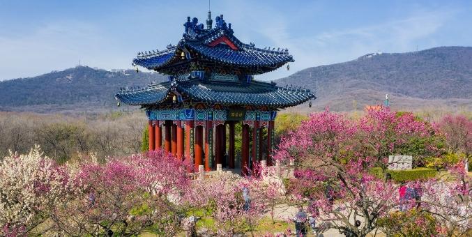 南京钟山风景名胜区有序有限开放