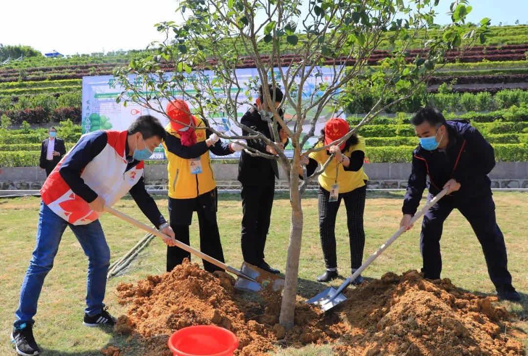 广东节地生态安葬率约60%,节地
