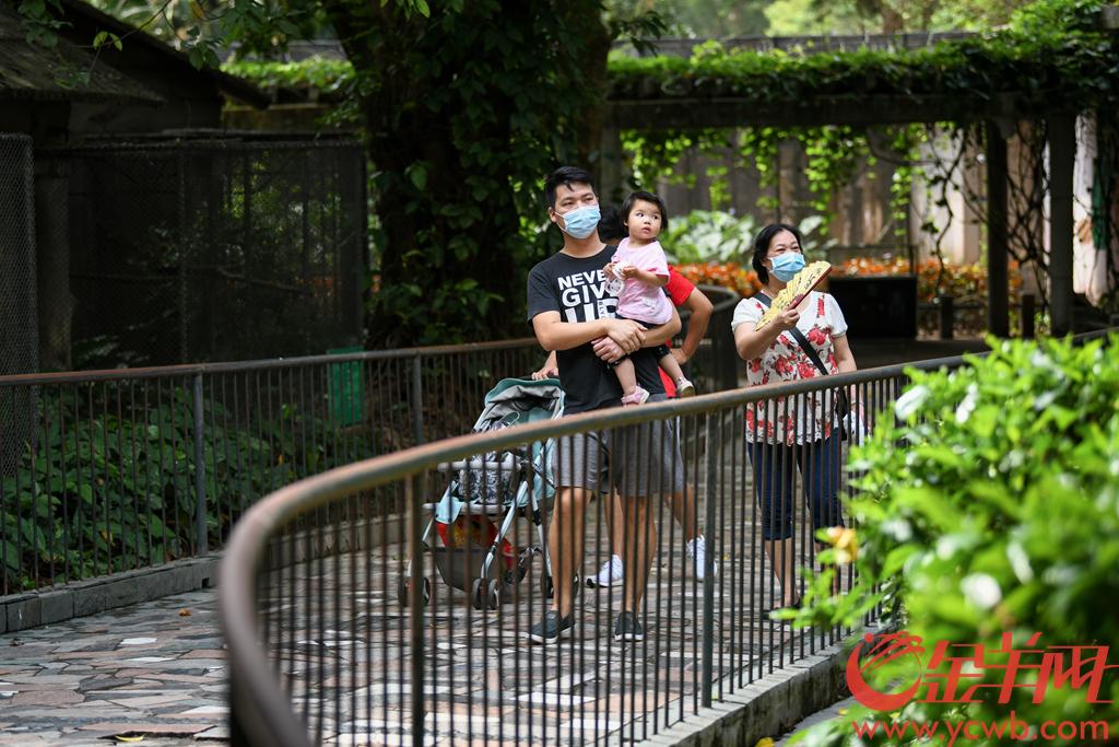 """广州动物园于5月15日起有序开放部分场馆,包括大熊猫室内展馆、盘龙苑、飞禽大观(鹦鹉长廊区域)、科普长廊(动物与地震科普馆、生命的地图馆、生命的足迹馆)、科技馆等。15日早上,动物园内游人不算多,大家有序进园观赏。周末即将到来,市民们可通过""""广州动物园票务""""微信公众号预约购票,重新和大熊猫见面。记者从园方了解到,包括长颈鹿饲喂体验区、逗趣园、灵猴屋、蝴蝶馆、科普长廊(动物保育员馆、向动物学本领馆、动物大学)在内的场馆和互动体验区继续暂停开放。羊城晚报全媒体记者 梁喻 摄"""