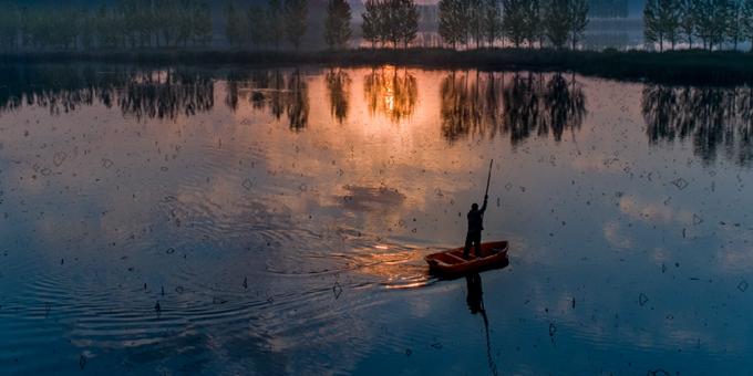 天鹅湖上霞光映照 晨晖流淌