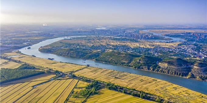航拍:淮河岸上 风吹麦浪