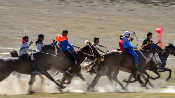 新疆福海春秋牧场上的速度赛马大赛