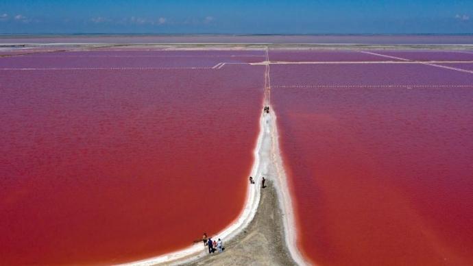 克里米亚盐湖粉色水面超惊艳