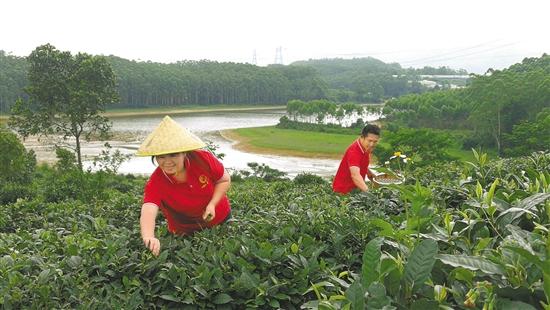 北京:春節蔬菜和家政服務保障供應聯合行動啟動