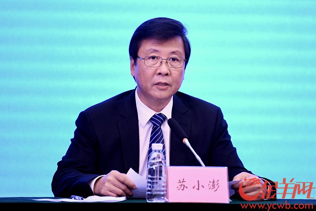 广州市白云区委副书记、区长苏小澎