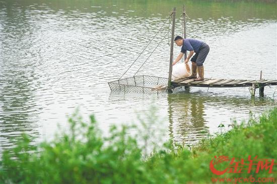 http://www.weixinrensheng.com/meishi/2221986.html
