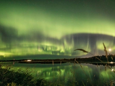 芬兰夜空现绚丽极光 绿色光芒奇幻迷人