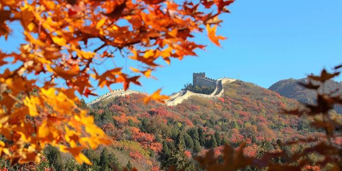 北京:红叶岭层林尽染景如画