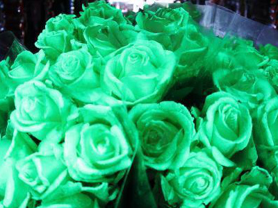 别出心裁 英国连锁超市推出万圣节发光玫瑰