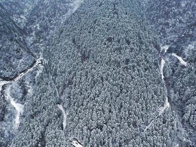 重庆黔江:高山地区普降大雪