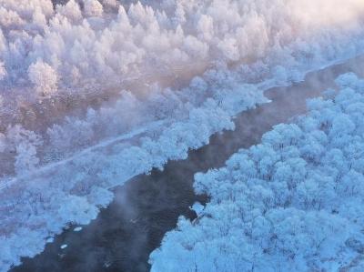 黑龙江黑河:航拍逊克雾凇 树木披羽衣打造极寒里童话世界