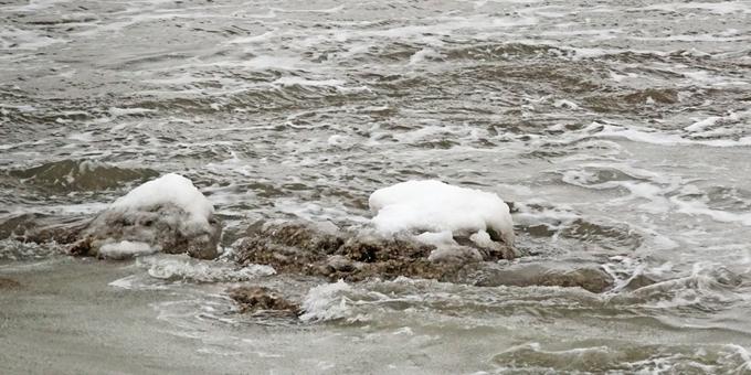 强寒潮来袭 大连海水大面积结冰
