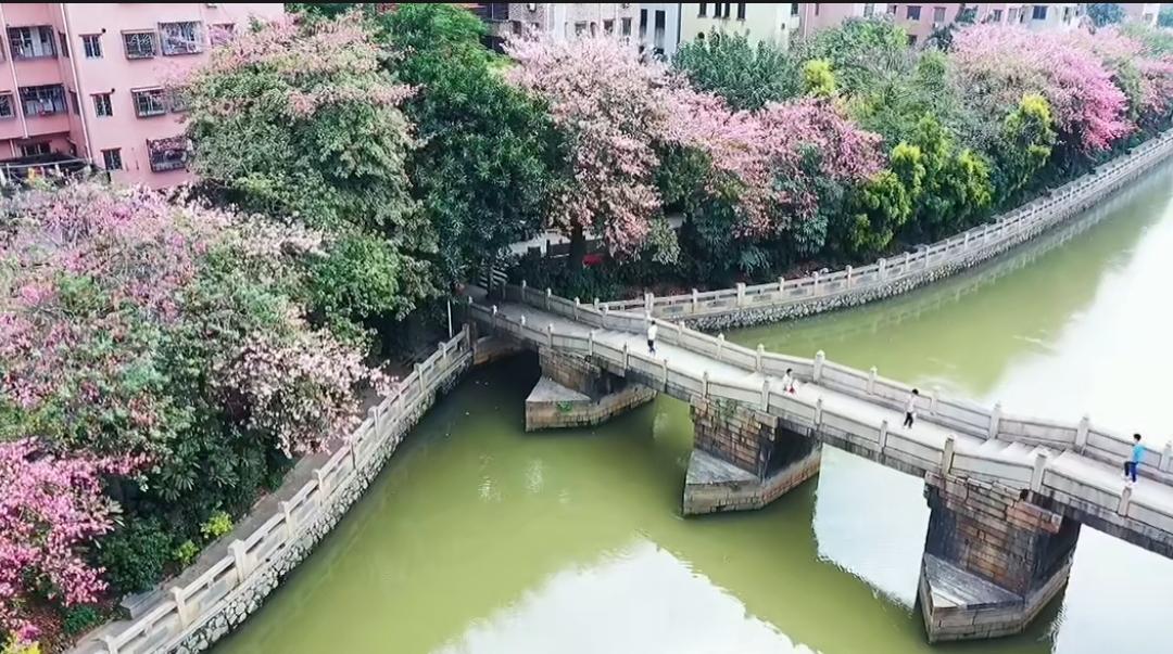 """奋战数年治""""墨河"""",打造治水"""""""
