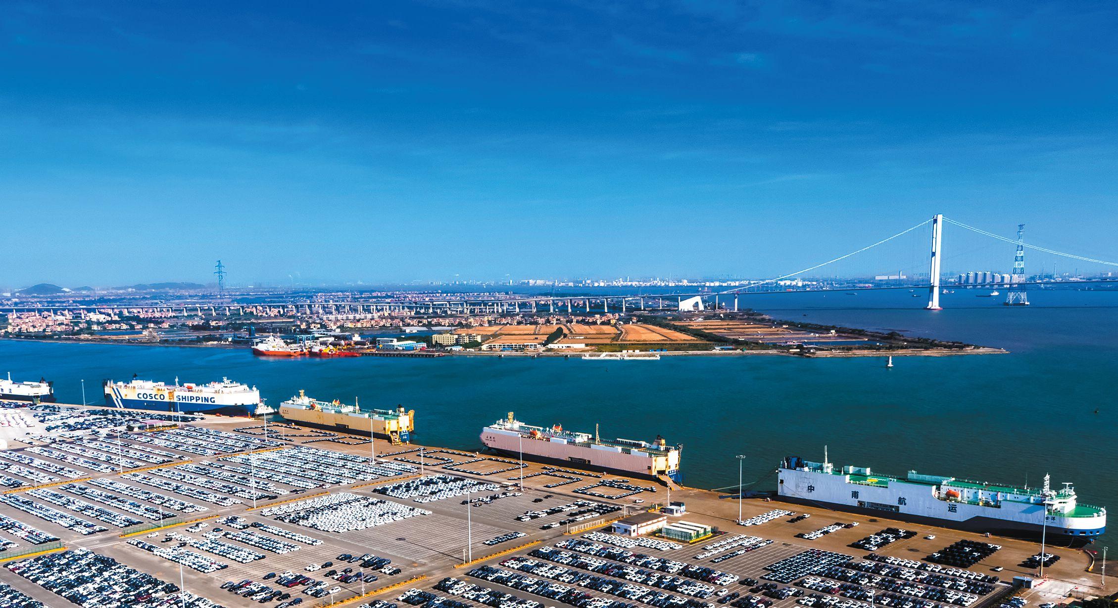 今年年底,近洋码头投产后,广州沙仔岛将形成国内最大滚装码头集群 羊城晚报记者 沈钊 通讯员 刘玺亚 黄永安 摄