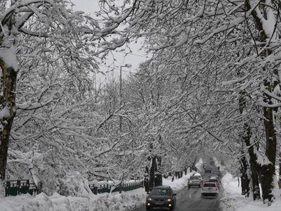 黎巴嫩贝鲁特迎大雪 银装素裹宛如白色童话世界