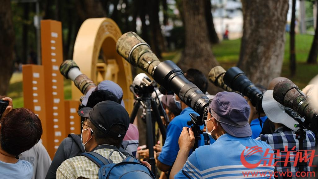 4月1日,广州市天河公园南门附近,一众街坊架起长枪短炮严阵以待,堪比重大采访现场。原来有一对猫头鹰定居树上,萌萌哒十分可爱。街坊称猫头鹰在这筑巢已经有2个星期了,不少街坊感叹,现在广州的生态环境越来越好,鸟都很喜欢来城区安家了。羊城晚报全媒体记者 陈秋明 摄