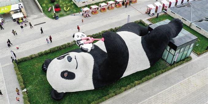 """""""熊猫之都""""迎新宠"""