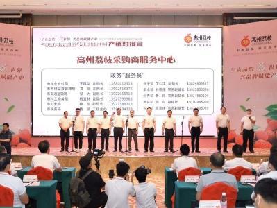 """政务""""服务员""""是对广东荔枝营销体系的创新与完善"""