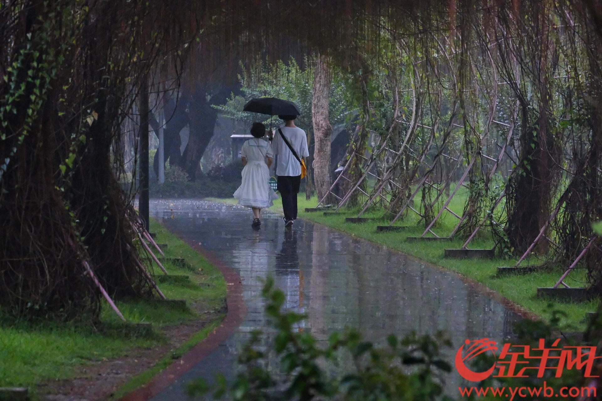 """立夏是夏季的第一个节气,其实广州的气温早早入夏了。 公园荷塘里一张张如翡翠的大绿盘开始长开,细心观察还能发现零星的""""小荷才露尖尖角"""",雨露下更加娇艳。 今年立夏刚好遇上五一假期,尽管雨水不时光顾,时晴时雨,但丝毫没有影响街坊们放假休闲的好心情。 景点依然很受欢迎,大排长龙,烈日也好,大雨也好,说好了进去打卡就""""一往无前""""。 雨伞的作用很""""强大"""",顶烈日,挡大雨,最重要的是情侣们造浪漫的""""法宝""""。 孩童们更是雀跃玩耍,不管风雨不管晴。 逛街的美女更是精心打扮,街头就是她们的时装秀场,为老城增添时尚活力。 漫步广州老城街头,包融、和谐独特的韵味,为老广街坊挚爱,也深深吸引着到访的""""新""""街坊们,他们面上的笑容就是最好的""""小红花""""。 羊城晚报全媒体记者 陈秋明 摄"""