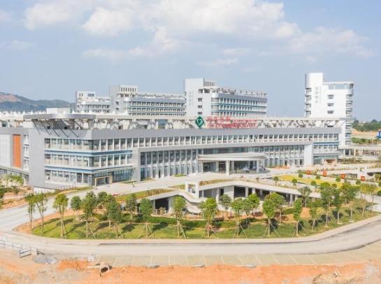 广西百色打造面向东盟医疗交流合作新平台