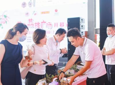 14家企业确定意向,采购总量近万吨,茂名荔枝广场落户上海