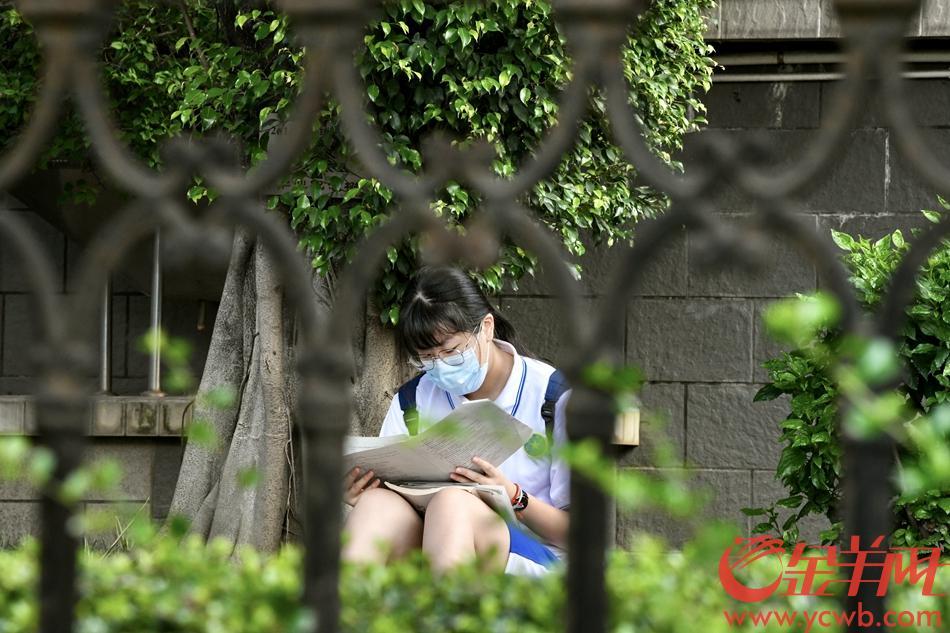 广州高风险地区白鹤洞街的真光中学,考生全部为学校内部封闭备考考生。考试前,考生在学校内抓紧复习。 羊城晚报全媒体记者 梁喻 摄