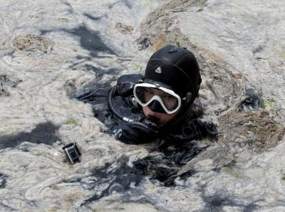 """清理""""海鼻涕"""" 土耳其潜水员置身黏液中"""