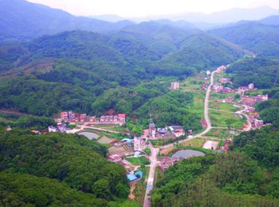 美丽乡村!来看2020年广东省森林乡村