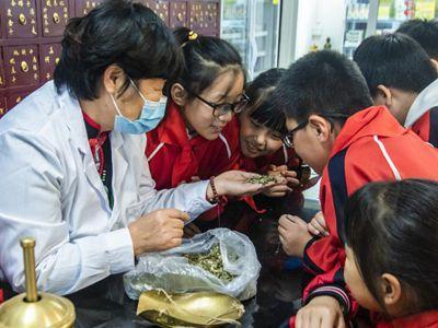 河北柏乡:感受传统中医文化魅力